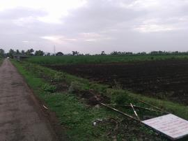 Agricultural Land in Satara | Agricultural Land for Sale in