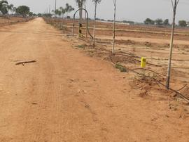 Agricultural Land in Hyderabad | Agricultural Land for Sale